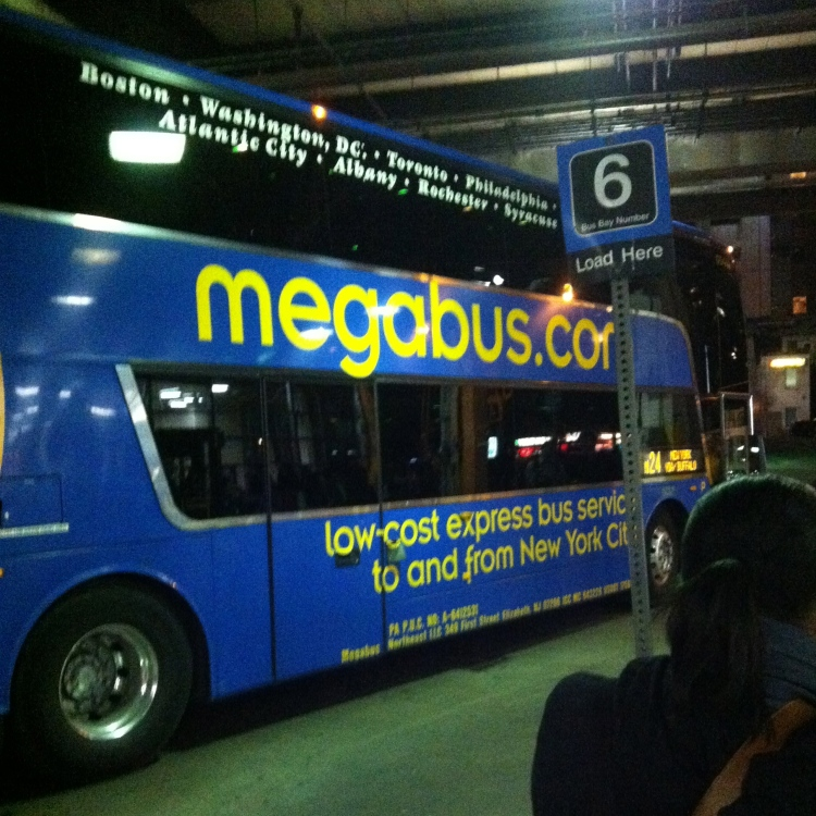 midnight bus